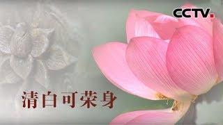 [中华优秀传统文化]清白可荣身| CCTV中文国际