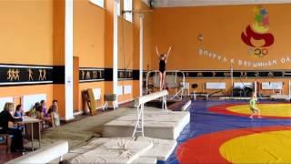 12 открытый чемпионат города по сортивной гимнастике