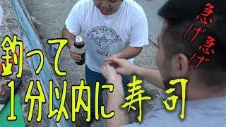 【新鮮】釣って最速で捌いて握るお寿司【最速握り】 thumbnail