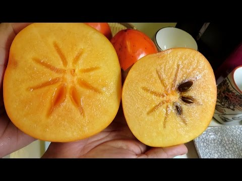 how to eat a persimmon video