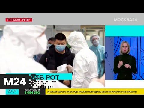 В Шереметьево началось тестирование на коронавирус - Москва 24