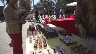 Dr. Seuss Birthday Party @ UC San Diego