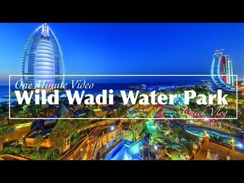 Wild Wadi Dubai Water Park | One Minute Video | Dubai, United Arab Emirates | Quick Vlog #16