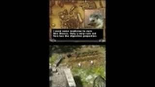 The Chronicles of Narnia: Prince Caspian Nintendo