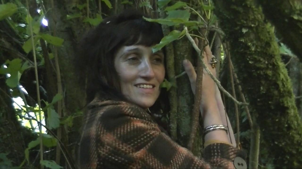 Our Native Irish Hazel Tree