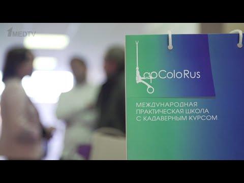 LapColoRus 2019 Краснодар // Репортаж