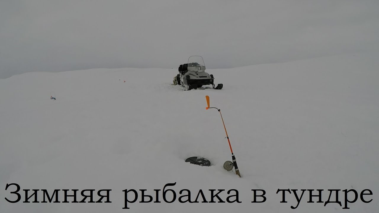 Зимняя рыбалка в тундре / Winter fishing in the tundra