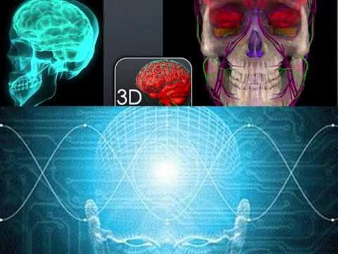 The Science of Consciousness (Professor Gerald Edelman & Professor Christof Koch)