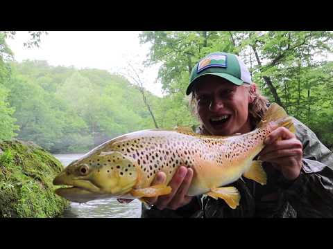 TROUT FISHING MISSOURI: CATCH OF A LIFETIME!! BIGGEST BROWN EVER(Fly Fishing Current River Missouri)