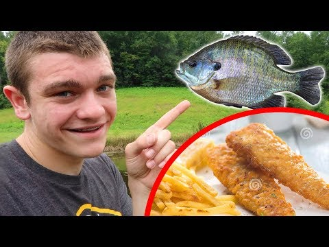 Bluegill Catch N' Cook!