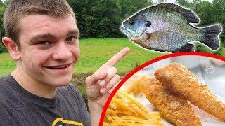 Bluegill Catch N' Cook!