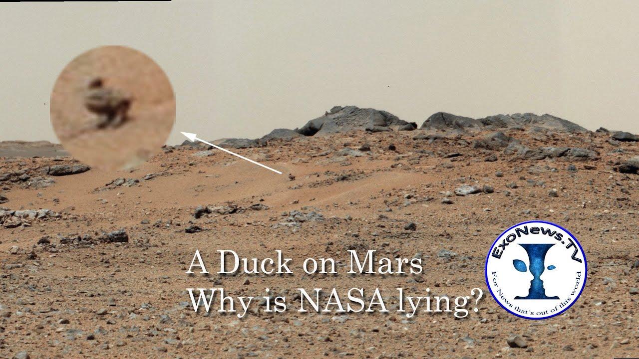 ExoNews -- Duck on Mars: Is NASA Lying? (S01E12) - YouTube
