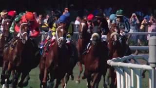 2017 Gr. I Diana Stakes at Saratoga