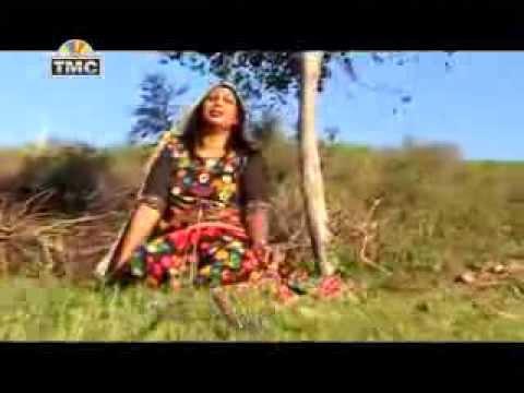 Kinu Dil Da Haal |New Punjabi Song |Baba Balak Nath Ji|shahtalai Himachal Mela 2014|Bilaspur|TMC