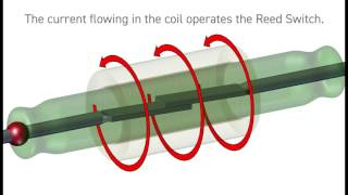 What is a Reed Relay? from Pickering Electronics