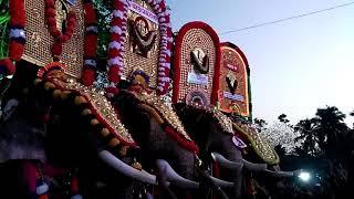 ഉയരകേമന്മാർ ഒന്ന് മത്സരിച്ചപ്പോൾ,Chulli,puthuppally kesavan,chirakkal kaalidasan,uttoly anandhan