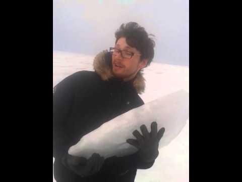 ice core samples