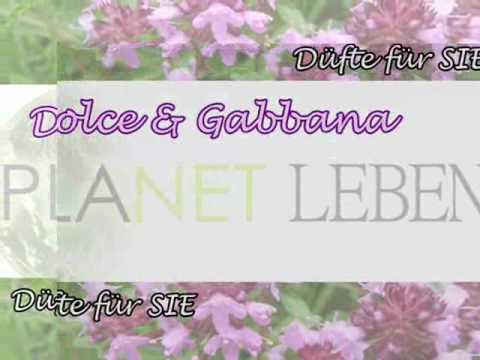 Planet Leben - Damen Parfüm
