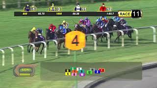 Vidéo de la course PMU RAFFLES CUP