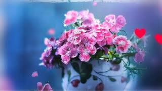 Good morning janu, image, ringtone,status,photo,wallpaper hd,gif,HD,pictures,pic,gift, gifts
