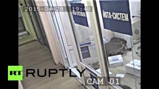 Еноты устроили погром в московском офисе интернет провайдера(Пара енотов устроила дебош в офисе компании «Йота Систем» в Москве. В здание их принесла профессиональная..., 2015-04-30T17:06:11.000Z)