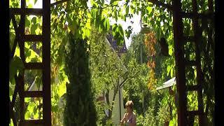 �������� ���� Ludmila Karpuhina, Summer tunes (Летние напевы) ������