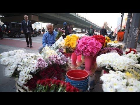 Türkiyenin Tek çiçek Borsası Istanbul çiçek Mezatı Youtube