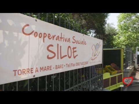 Siloe Coop. Soc - Comunità Sannicola, Torre a Mare