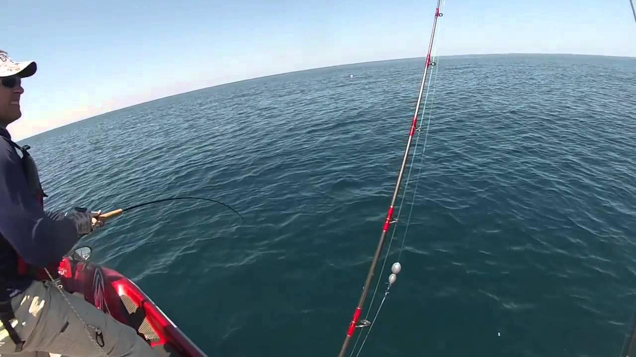 Offshore jet ski fishing surfside tx big cobia for Surfside fishing report