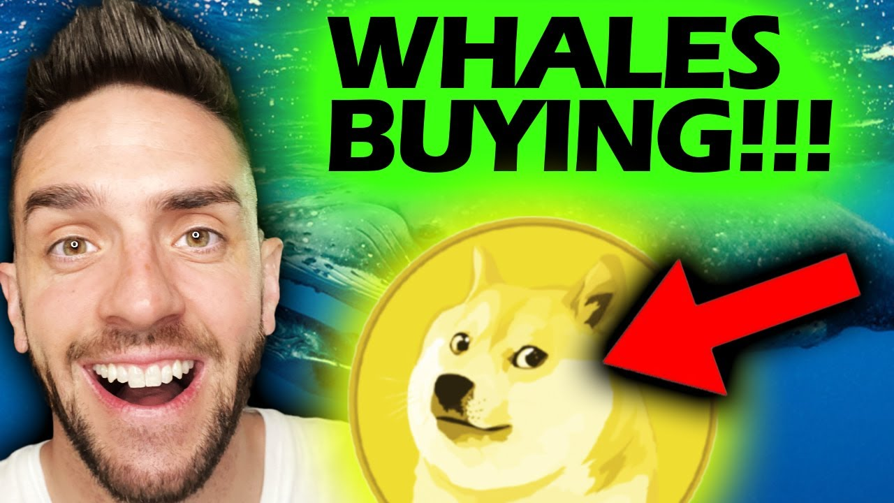 WHALES ARE BUYING DOGECOIN RIGHT NOW!!!!!!!!!!! #DOGECOIN #DOGE