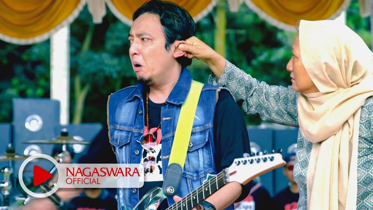 Download lagu wali yank stafa band