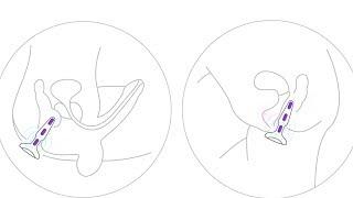 On dildos bendable slide Male rubber