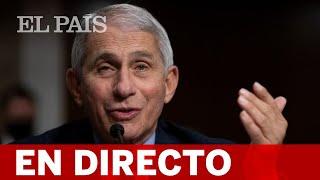 DIRECTO CORONAVIRUS | FAUCI interviene en la Junta Ejecutiva de la OMS