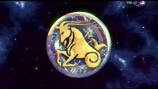 Характеристика Знака Зодиака Козерог