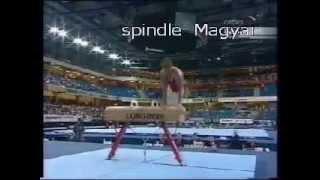 Named Gymnastic Elements. Pommel Horse