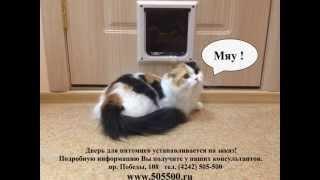 Дверца для кота, кошки, маленькой собачки