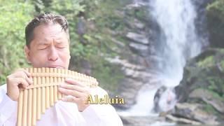 Aleluia Interpretado por Victor Quinto