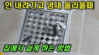 화장실하수구 물이 안내려가고 냄새 올라올때 쉽게 해결하…