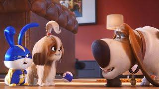 Тайная жизнь домашних животных 2 - Русский трейлер 2019 (The Secret Life of Pets 2)