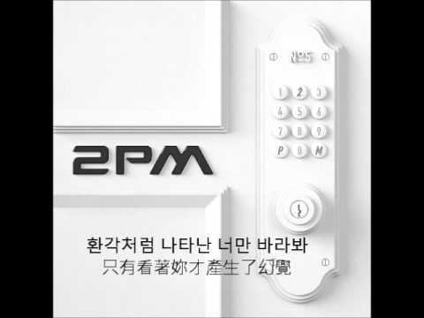 (+) 환각-2PM