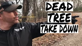 How to take down a dead tree with your Warn Winch on your SXS
