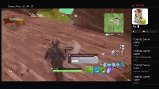 Fortnite over 150+WINS PS4 player In Anti Clan
