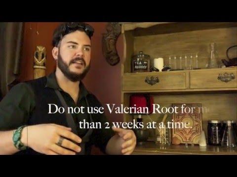 Valerian Root Health Benefits - Sleep Aid and More