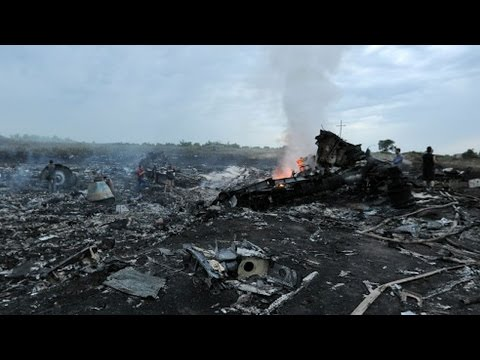 Malaysian Passenger Jet Crashes in Ukraine