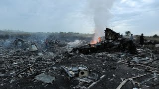 Malaysian Passenger Jet Crashes in Ukraine