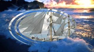 Чайки за кормой верны кораблю