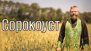 Download Что Такое Сорокоуст Mp3 and Videos