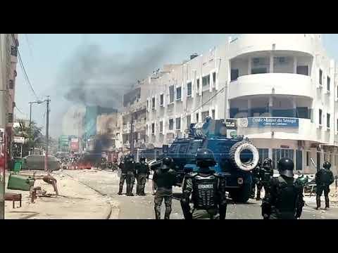 🛑 Urgent section de recherches : Des manifestants repoussés à Colobane par la gendarmerie