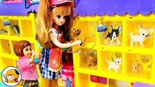 ケリー 学校の職場体験【中編】 ペットショップで犬が迷子!! トリマーがシャンプーにカット♪ おもちゃ ここなっちゃん