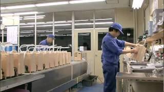 Enagic Company Profile And History - LeveLuk SD501 Ionizer Kangen Water